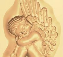 Проект небольшой ангел.